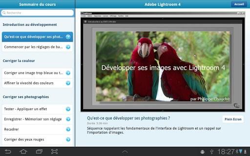 Скриншот Adobe Lightroom для Android