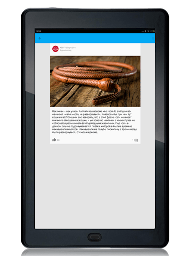 Скриншот Lingvo Live для Android