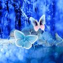 Абстрактные Бабочки для Андроид скачать бесплатно