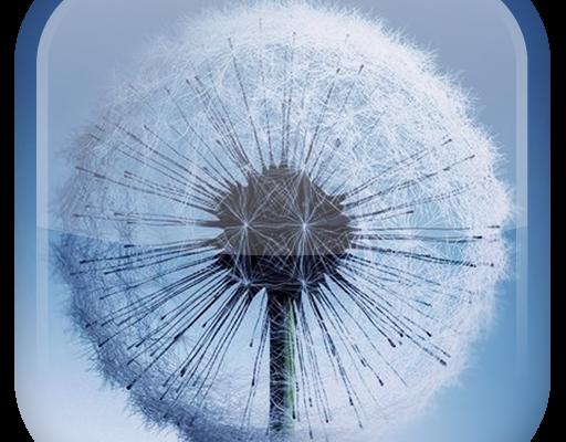 Galaxy S3 Dandelion Live Wallpaper Download