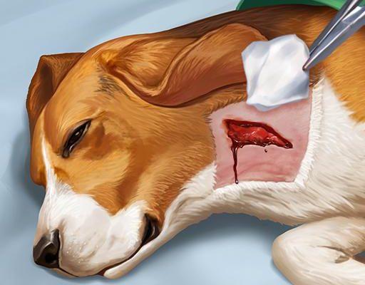 Operate Now: Animal Hospital для Андроид скачать бесплатно