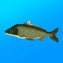 Реальная Рыбалка для Андроид скачать бесплатно