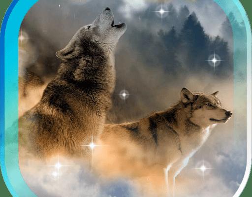 Скачать Живые Обои Волка На Андроид