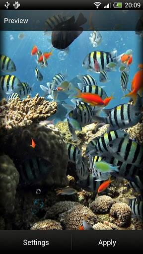 Скриншот Океан LWP для Android