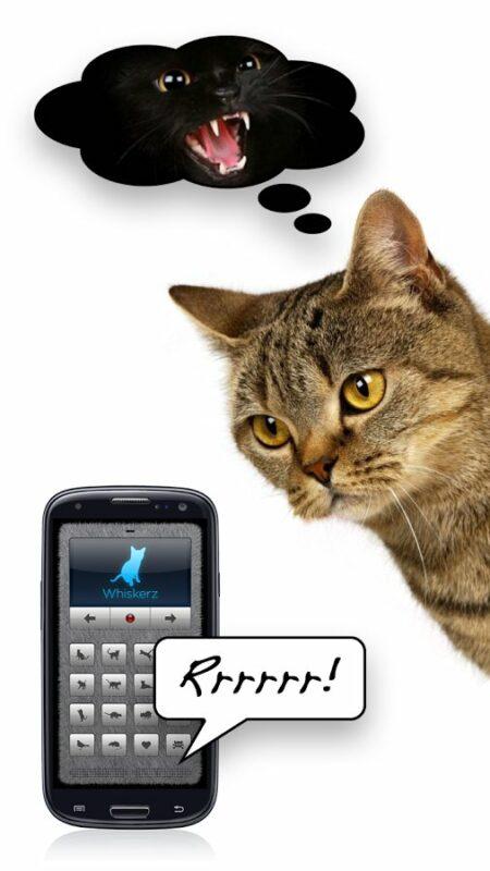 Скриншот Переводчик на кошачий для Android