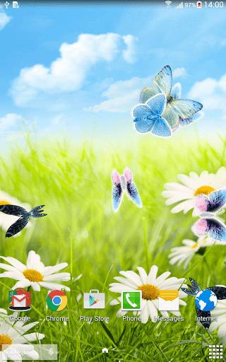 Скриншот Ромашки Живые обои / Daisies LWP для Android