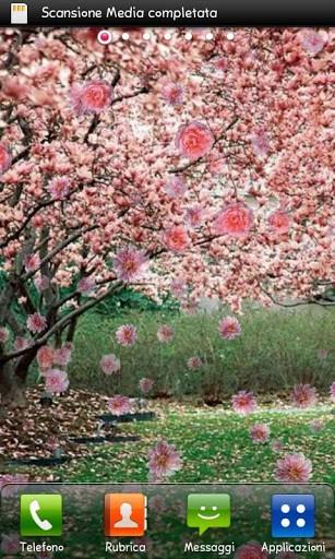 Скриншот Весна живые обои / Spring Live Wallpaper для Android