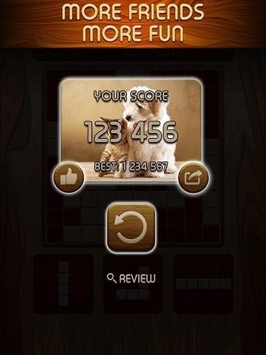 Скриншот Woody Block Puzzle для Android