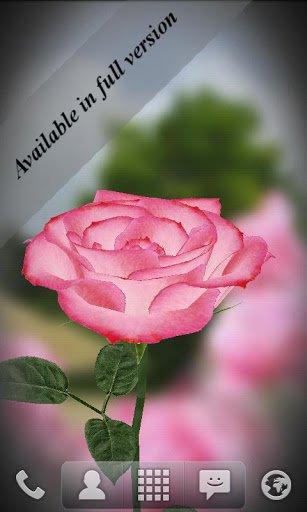 Скриншот Живые обои Роза 3D / 3D Rose Live Wallpaper Free для Android