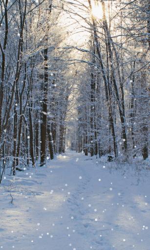 Скриншот Зима обои для Android
