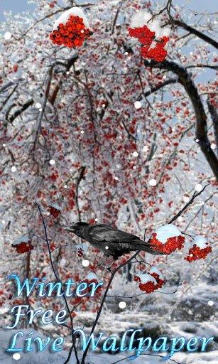 Скриншот Зима живые обои 3D / Winter Free LWP для Android